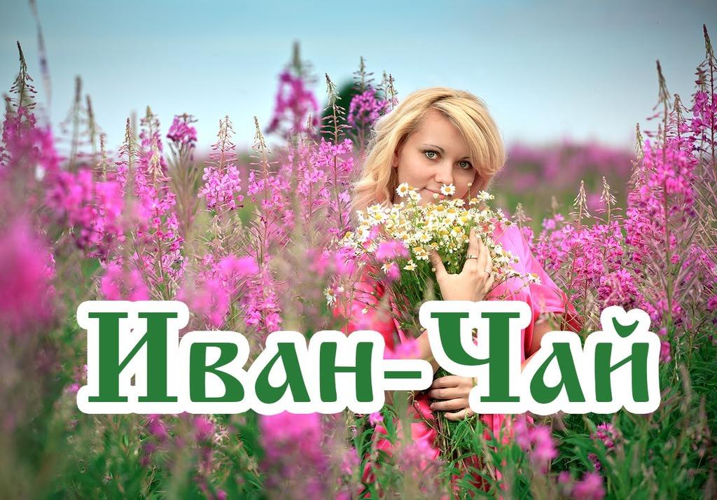 РИА «Иван-Чай» Елена Мизулина: «Полномочия органов опеки должны быть ограничены» (27.11.15)
