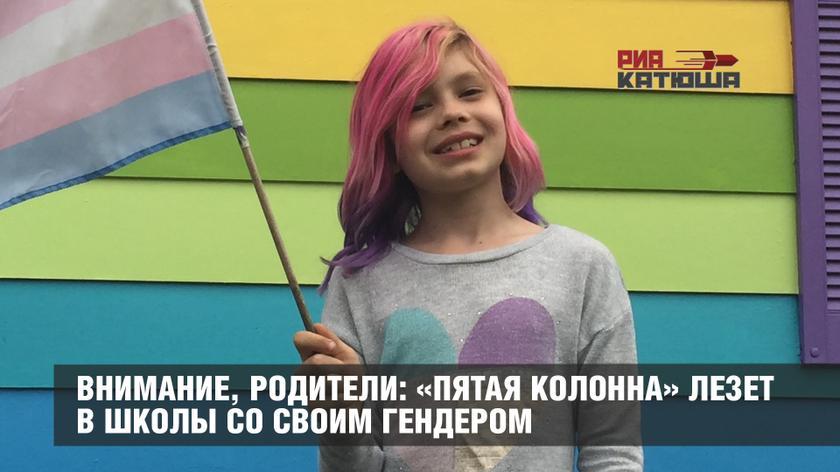 РИА Катюша: «Внимание, родители: «пятая колонна» лезет в школы со своим гендером» (28.11.17)